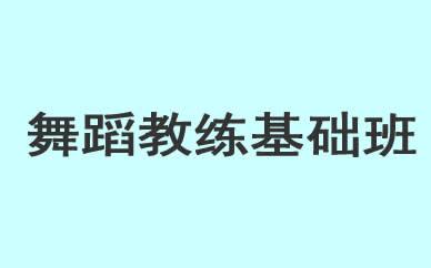 郑州舞蹈教练基础班