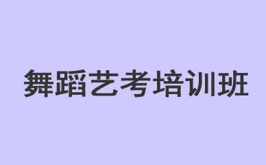 郑州舞蹈艺考培训班课程