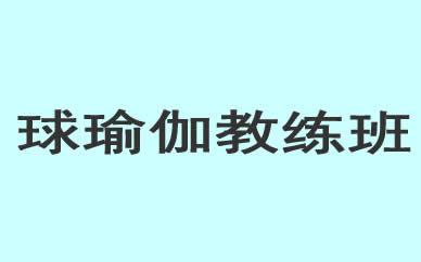 郑州球瑜伽教练班培训课程_郑州球瑜伽舞蹈培训课程