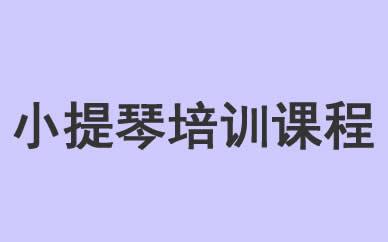 郑州乐器培训小提琴培训课程