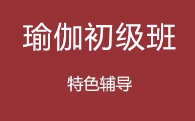 郑州瑜伽初级班培训辅导课程