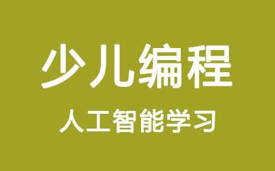 郑州人工智能少儿编程班_郑州少儿人工智能编程班