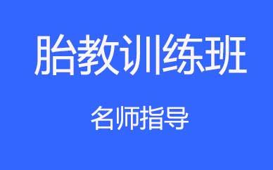 郑州胎教专项训练提升课程