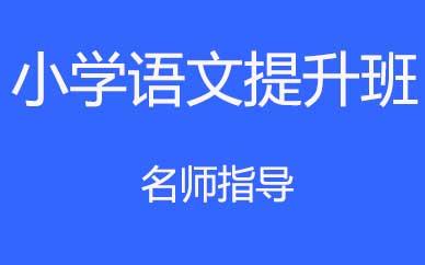 郑州小学语文提升培训课程_郑州小学语文基础辅导课程