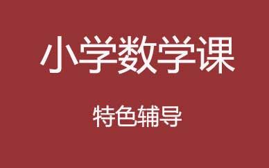 郑州小学数学精讲辅导课程_郑州小学数学提升辅导班