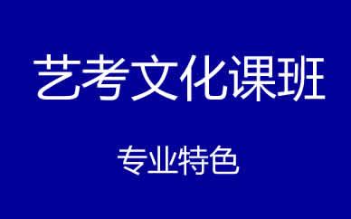 郑州艺考生文化课一对一提升课程