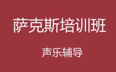 郑州乐器萨克斯培训班课程_郑州萨克斯一对一培训