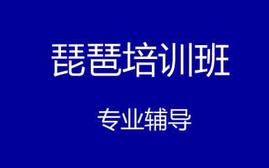 郑州专业琵琶培训班课程