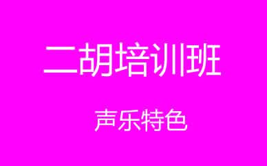 郑州声乐二胡培训班课程