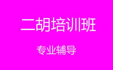 郑州二胡乐器培训课程