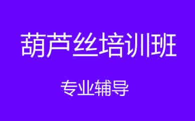 郑州乐器葫芦丝培训班课程